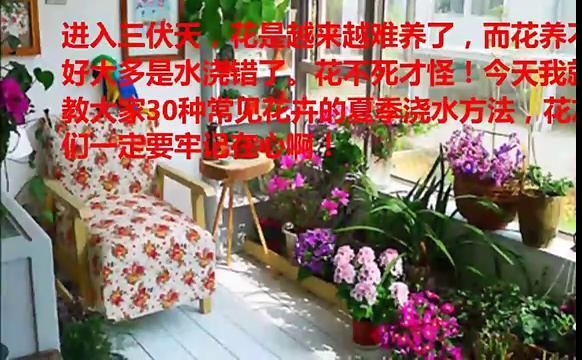 教你30种花卉的夏季浇水方法
